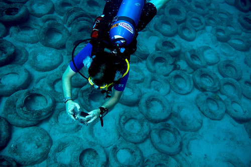 Will Nuckols photographs the tire reef in Ft Lauderdale Florida